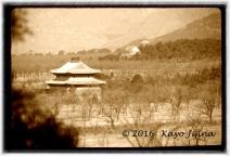 Xian Countryside